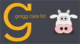 Quatro Safety Gumboot From Gregg Care Ltd - Gregg Care